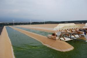 Cellana KDF open ponds2