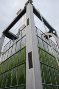 Vertical photobioreactor tall