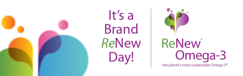 new-slide-brand-renew